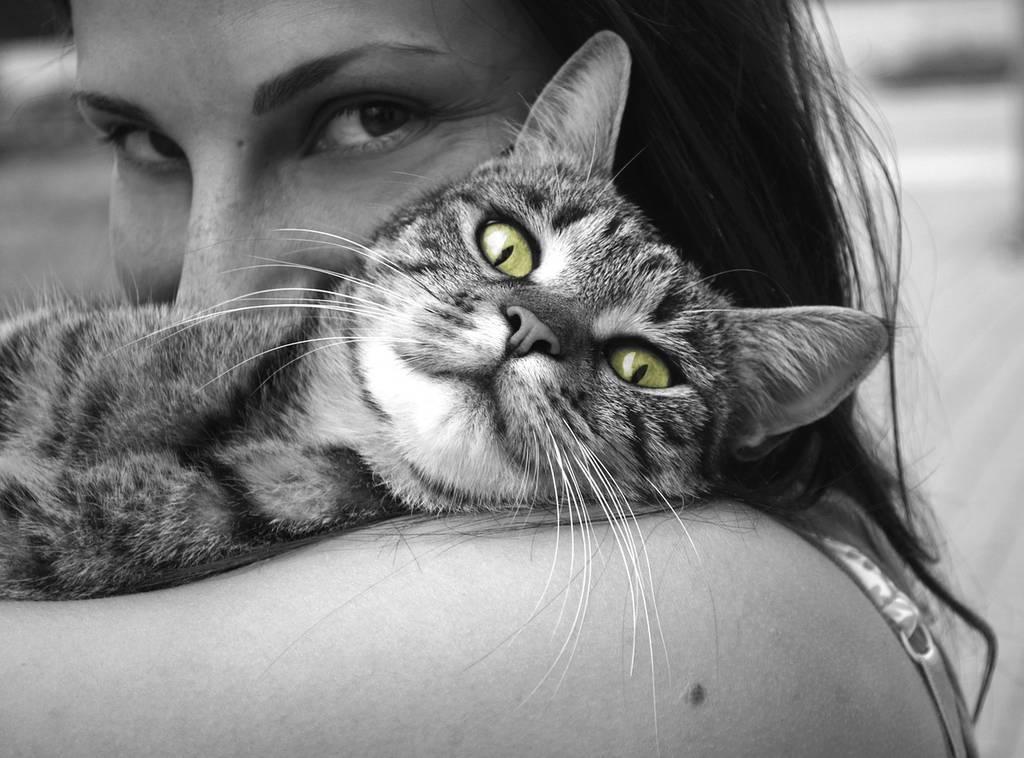 Fotografia czarno biała - temat popularny